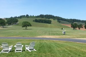 helicopter wine tasting tour oregon mcminnville stoller dundee hills